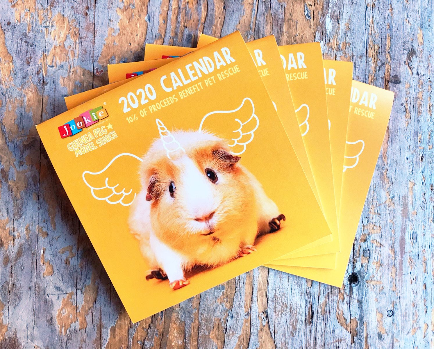 Purchase your Guinea Pig 2020 Calendars!
